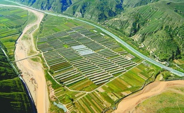 安塞探索大棚种植,提高了农民的收入